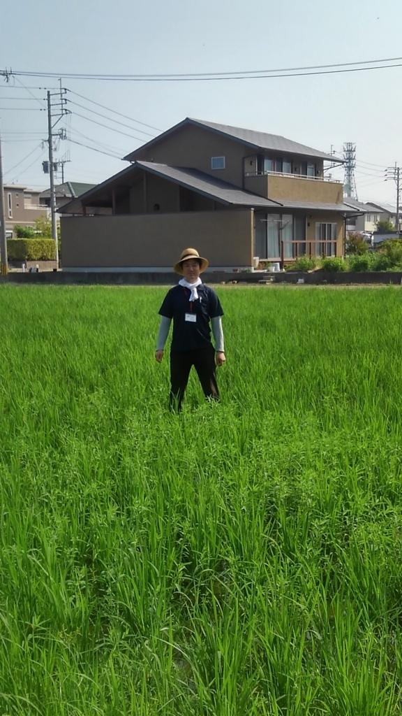 f:id:sancyokutamashii:20180806223301j:plain