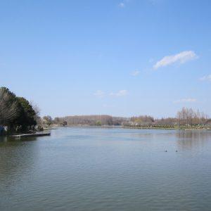 水元公園 4月