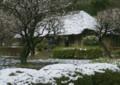A101 永井家に雪