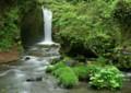 wt11 竜返しの滝-2