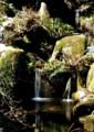 YP15 薬師の小滝