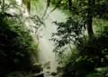 SA15 濱の幽谷