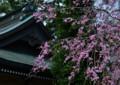 KT12 熊野神社