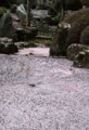 YN09  恵林寺の池