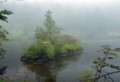 NN04 朝霧の恵み