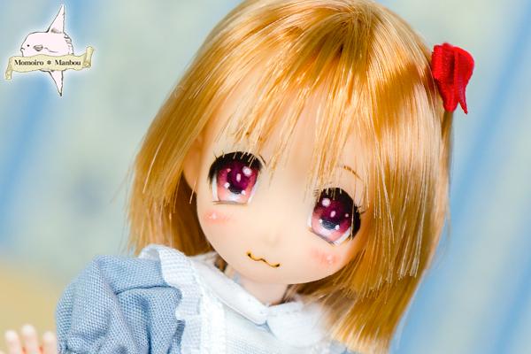 f:id:sango-momo:20160904120518j:plain