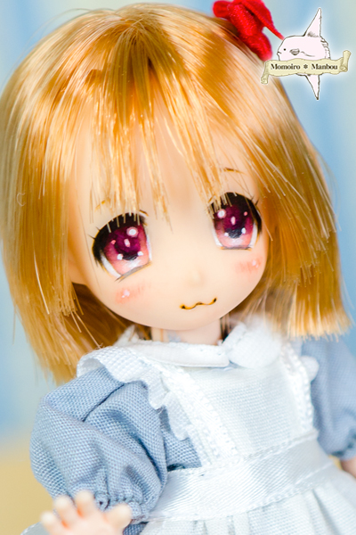 f:id:sango-momo:20160904120725j:plain