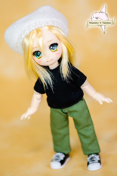 f:id:sango-momo:20160918202859j:plain
