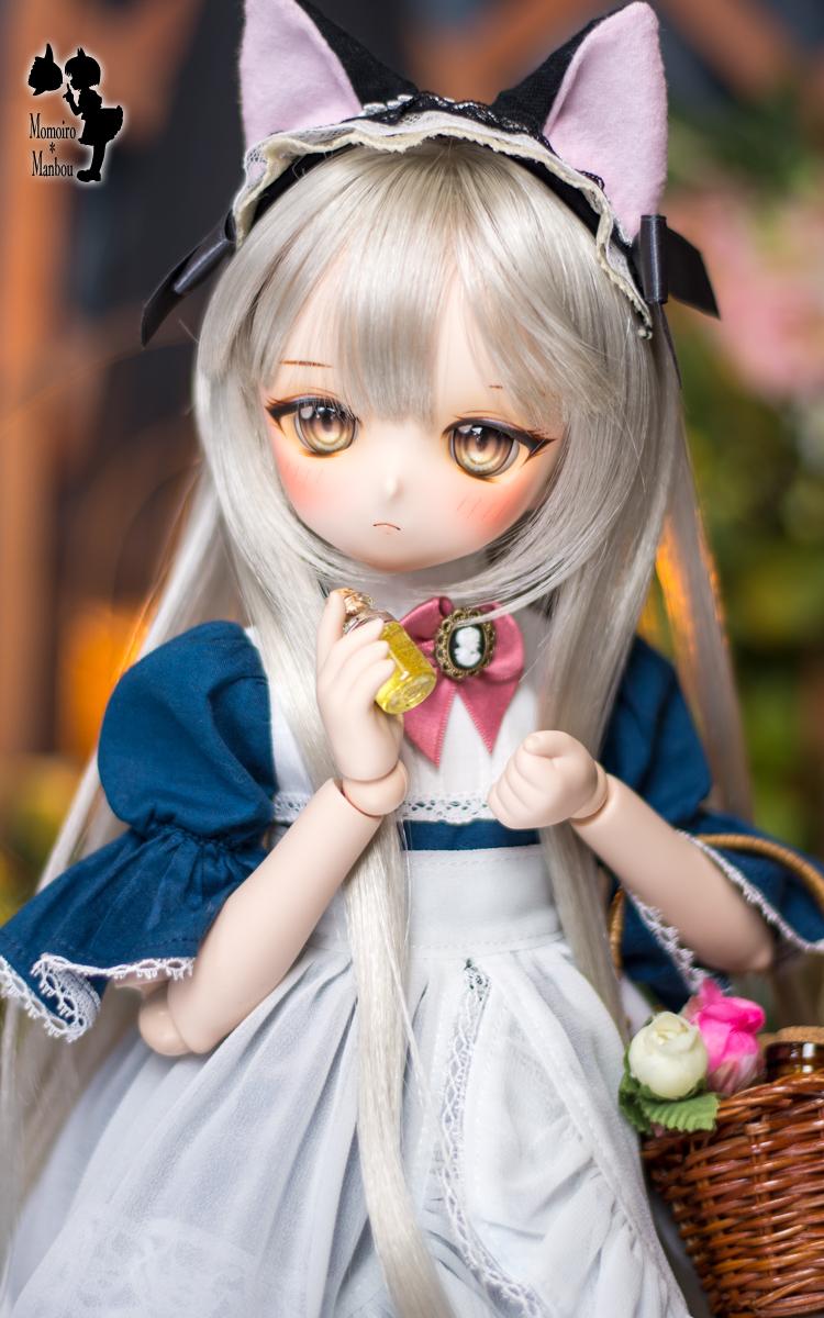 f:id:sango-momo:20210108135632j:plain