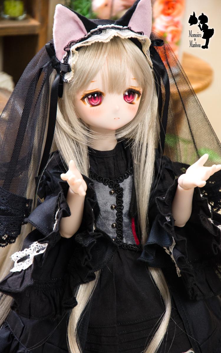 f:id:sango-momo:20210528223223j:plain