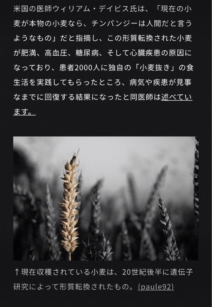 f:id:sango7jamy:20210616231630j:image