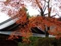 玉作神社紅葉