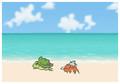カニさんと海