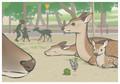 奈良公園with蝶