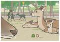 ねずさんと奈良公園