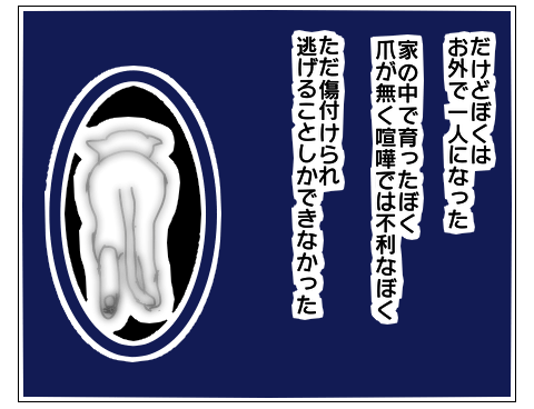 f:id:sangoruka_cats:20171102024137p:plain