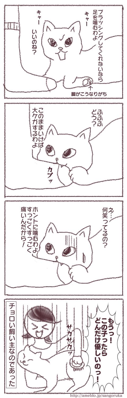 f:id:sangoruka_cats:20171103021545p:plain