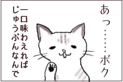 f:id:sangoruka_cats:20171106015532j:plain