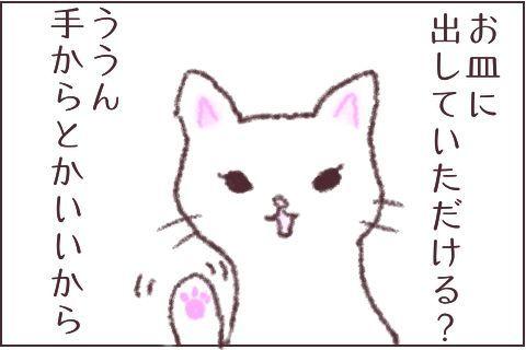 f:id:sangoruka_cats:20171106015533j:plain