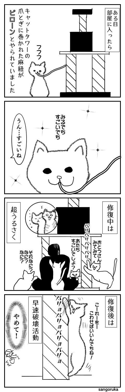 f:id:sangoruka_cats:20171106170414j:plain