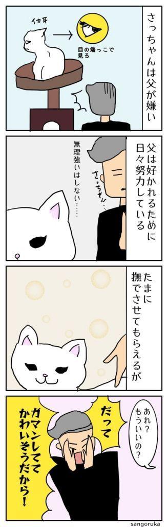 f:id:sangoruka_cats:20171106171853j:plain