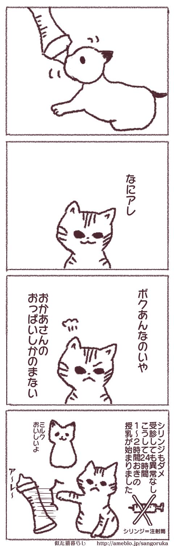 f:id:sangoruka_cats:20171107144032p:plain