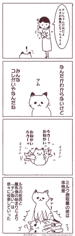 f:id:sangoruka_cats:20171107144037p:plain
