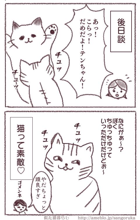 f:id:sangoruka_cats:20171107144038p:plain