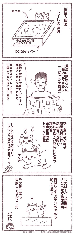 f:id:sangoruka_cats:20171107144053p:plain