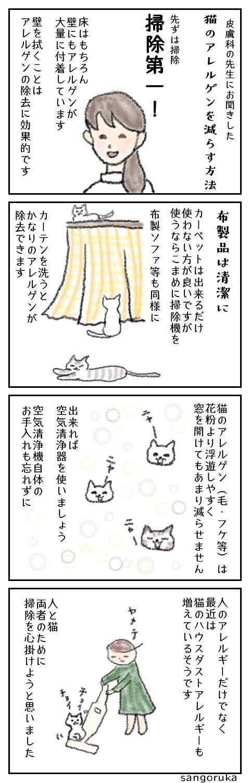 f:id:sangoruka_cats:20171107154223j:plain