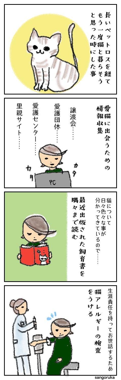f:id:sangoruka_cats:20171107154239j:plain