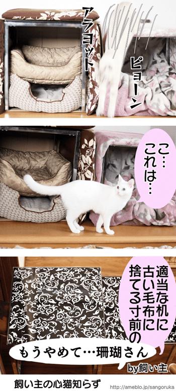 f:id:sangoruka_cats:20171109031844p:plain