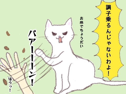 f:id:sangoruka_cats:20180326220451j:plain
