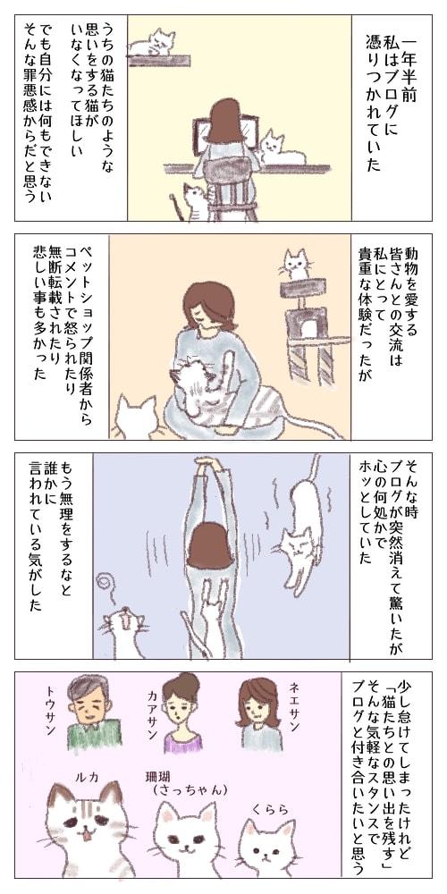 f:id:sangoruka_cats:20180328173813j:plain