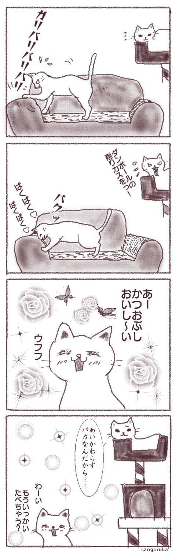 f:id:sangoruka_cats:20180404001159j:plain