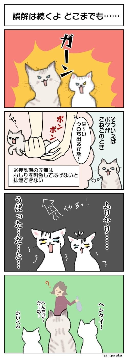 f:id:sangoruka_cats:20180405200651j:plain