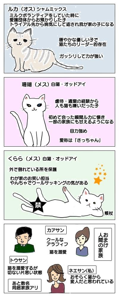 f:id:sangoruka_cats:20180406150803j:plain