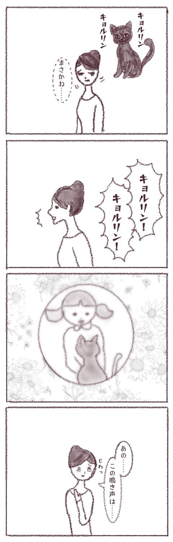 f:id:sangoruka_cats:20180412093852j:plain