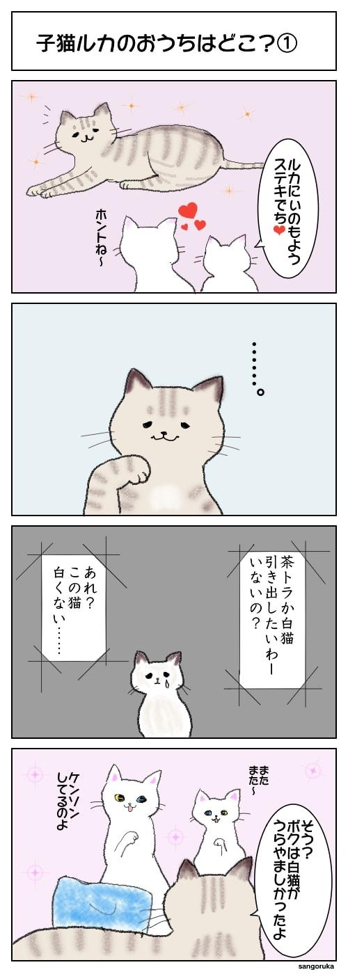 f:id:sangoruka_cats:20180424193459j:plain