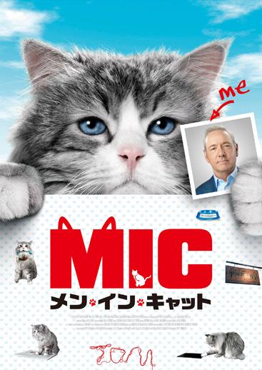 f:id:sangoruka_cats:20180530134128j:plain