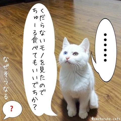 f:id:sangoruka_cats:20180608132400j:plain
