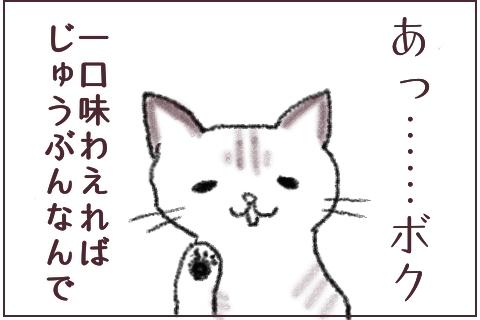 f:id:sangoruka_cats:20180609234842j:plain