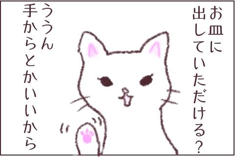 f:id:sangoruka_cats:20180609234843j:plain