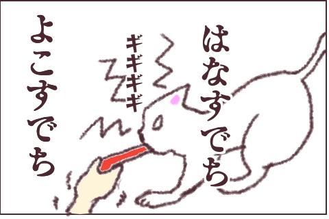 f:id:sangoruka_cats:20180609234845j:plain