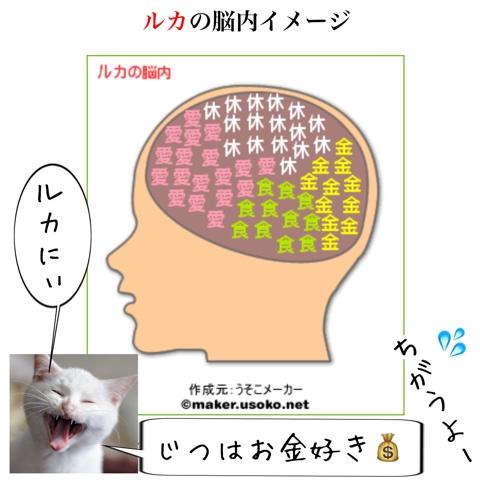 f:id:sangoruka_cats:20180803002447j:plain