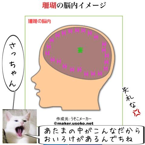f:id:sangoruka_cats:20180803002448j:plain