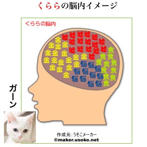 f:id:sangoruka_cats:20180803002449j:plain