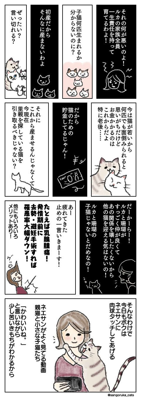 f:id:sangoruka_cats:20181009203910j:plain