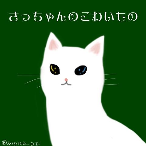f:id:sangoruka_cats:20181025012648j:plain