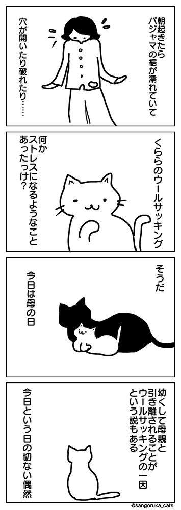 f:id:sangoruka_cats:20190512142359j:plain